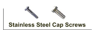 Stainless Steel Cap Screws